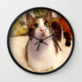 Antigone sweet kitty Wall Clock