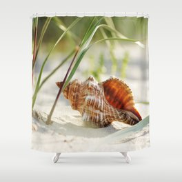 big shell in the sand, in the green of the beach-oats Shower Curtain