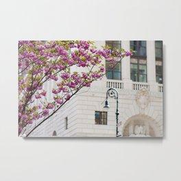Spring in Brooklyn Metal Print