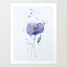 Blue Poppy flower illustration painting in watercolor Art Print