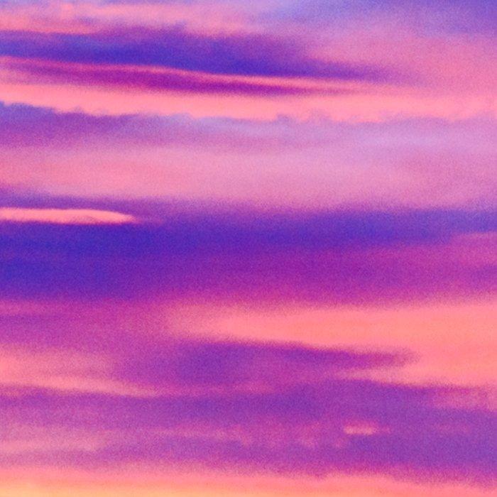 Biscay Bay sunset Leggings