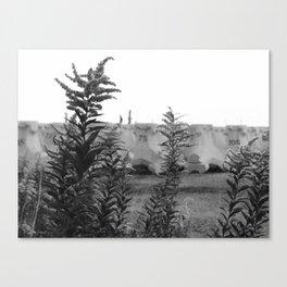 Forgoten place Canvas Print
