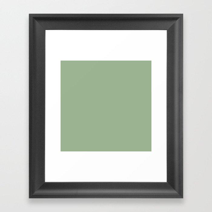 Solid Color SAGE GREEN  Gerahmter Kunstdruck