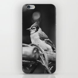 The Bird (Black and White) iPhone Skin