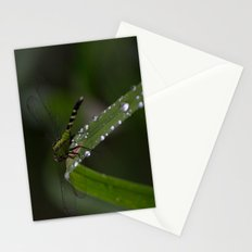 Dragon Fly 2 Stationery Cards