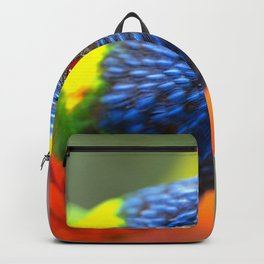 Majestic Magnificent Exotic Colorful Rainbow Lorikeet Parrot Head Close Up Ultra HD Backpack