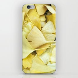 Yellow Ginkgo Leaves iPhone Skin