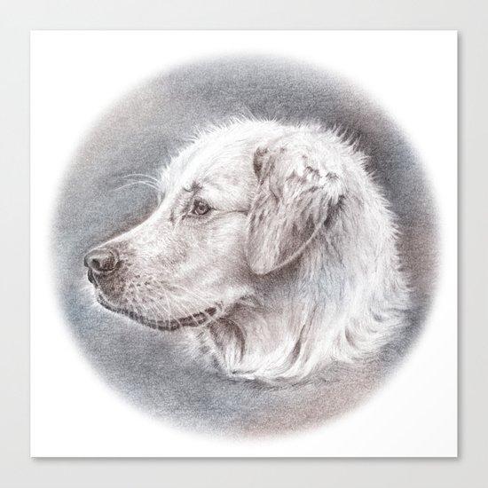 Golden Retriever Dog Drawing Canvas Print