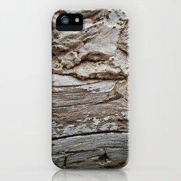 029 iPhone Case