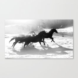 snow and shadows Canvas Print