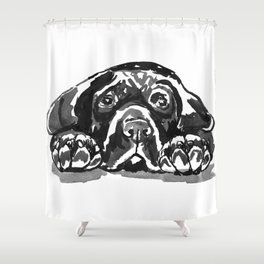 Black Lab - front view Shower Curtain