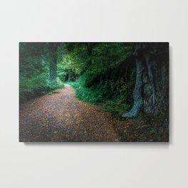 Golden Autumn lane Metal Print