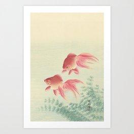Goldfish Vintage Japanese Woodblock Print Art Print