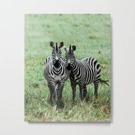 Serengeti XXIV Metal Print