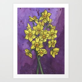 Jonquils - Watercolor and Ink artwork Art Print