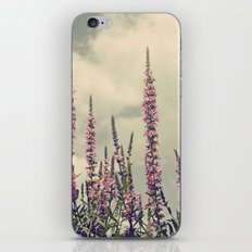 Up to the Sky iPhone & iPod Skin