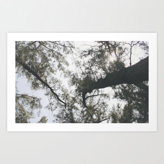 Above Art Print