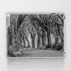 The Trees, Norfolk Laptop & iPad Skin