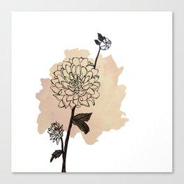 dahlias Canvas Print