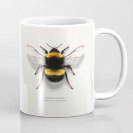 Bombus Lucorum Coffee Mug