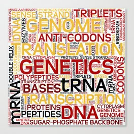 MOLECULAR BIOLOGY - Protein Synthesis Canvas Print