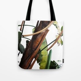 Santa Barbara Elephant Ears Tote Bag