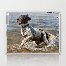 Springer Spaniel Laptop & iPad Skin
