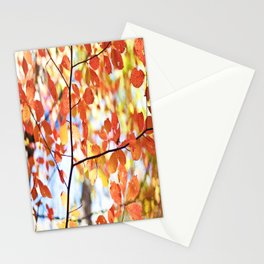 falls color Stationery Cards