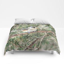 Tiny Titmouse Comforters