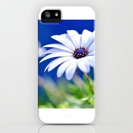 Happy White Daisy  by Kaye Menner iPhone Case