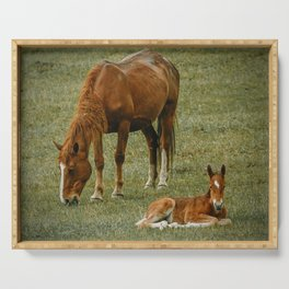 Horse And Foal Serving Tray
