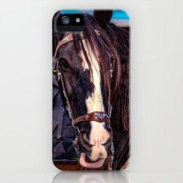 Concept Kaltblutmarkt 2018 : Horse eyes iPhone Case
