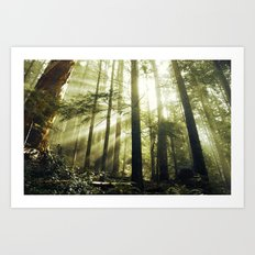 The Call of the Forest Art Print