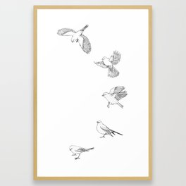 Juncos in Winter Framed Art Print