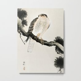 Hawk sitting on a pine tree - Vintage Japanese Woodblock Print Art Metal Print