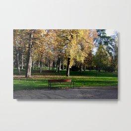 """""""Banca en el parque"""" Metal Print"""