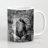 south africa Mugs featuring Male Lion, Kgalagadi, South Africa by Shannon Wild
