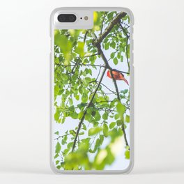 Song from Above Clear iPhone Case