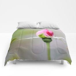 Dewdrops On Rosebud Comforters