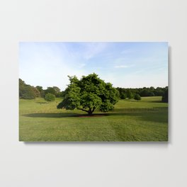 A View From Kenwood House Metal Print