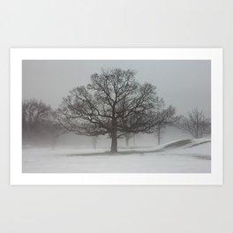 Druid Hill Fog Art Print