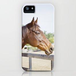 Gulliver Watching iPhone Case