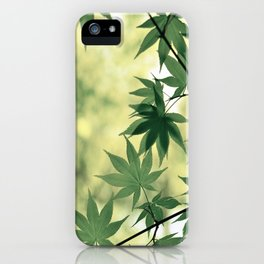 Green Japanese Maple iPhone Case