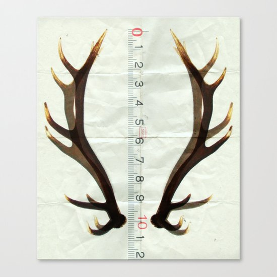 antlers measure Canvas Print