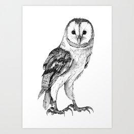 Barn Owl - Drawing In Black Pen Art Print