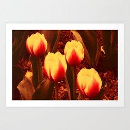 Fireflowers Four Art Print