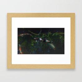 Koi Creek Framed Art Print