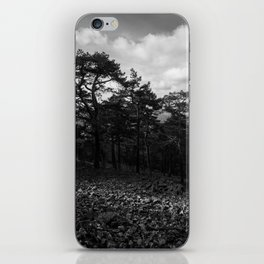 Rock River iPhone Skin