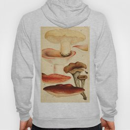 British Edible Fungi Hoody