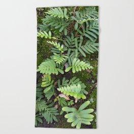 Moss and Fern Beach Towel